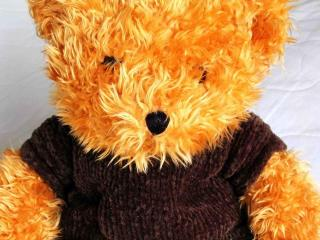 Teddy Bear Thieves Thwarted by Red Lights, Helpful Witnesses